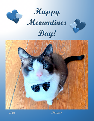 Happy Meowntines.png