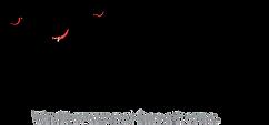 BPF logo.png