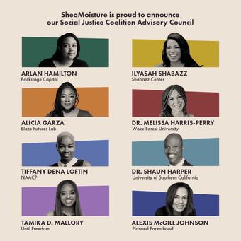 Social Justice Coalition Advisory Council