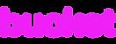 Bucket Logo.png