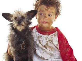 La supervisión de los niños y las mascotas