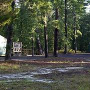 Brendan Byrne State Forest