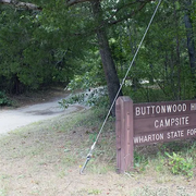 WHARTON STATE FOREST: BUTTONWOOD HILL