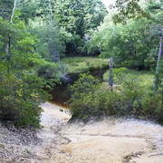 WHARTON STATE FOREST: HAWKIN BRIDGE