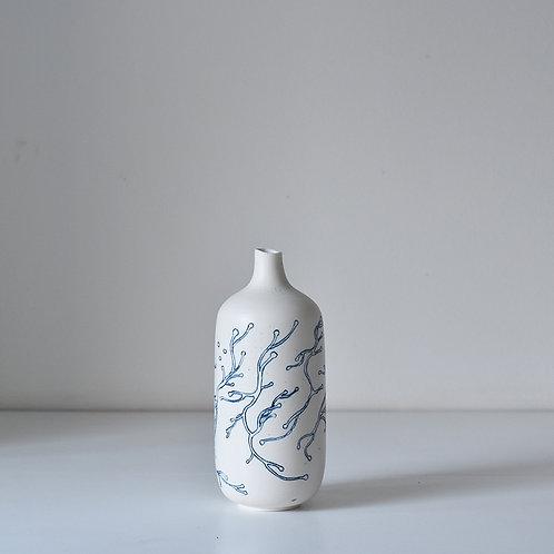 vase underwater flora