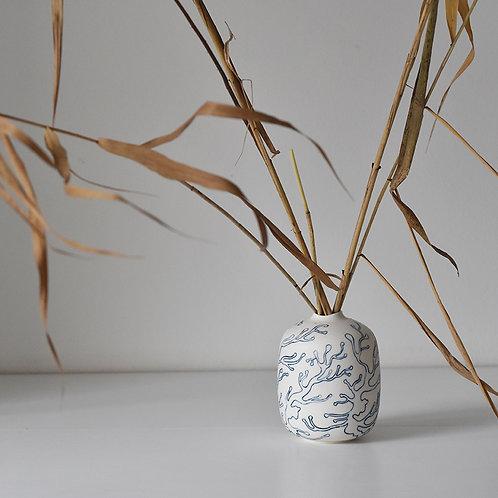 small vase underwater flora