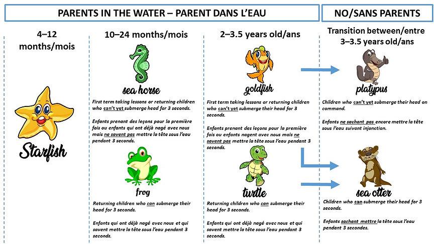 Parent Child Level Diagram ENG-FR versio