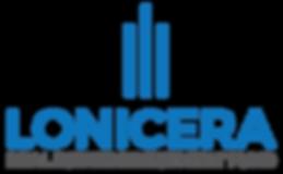 Cropped Transparent Logo -HW.png