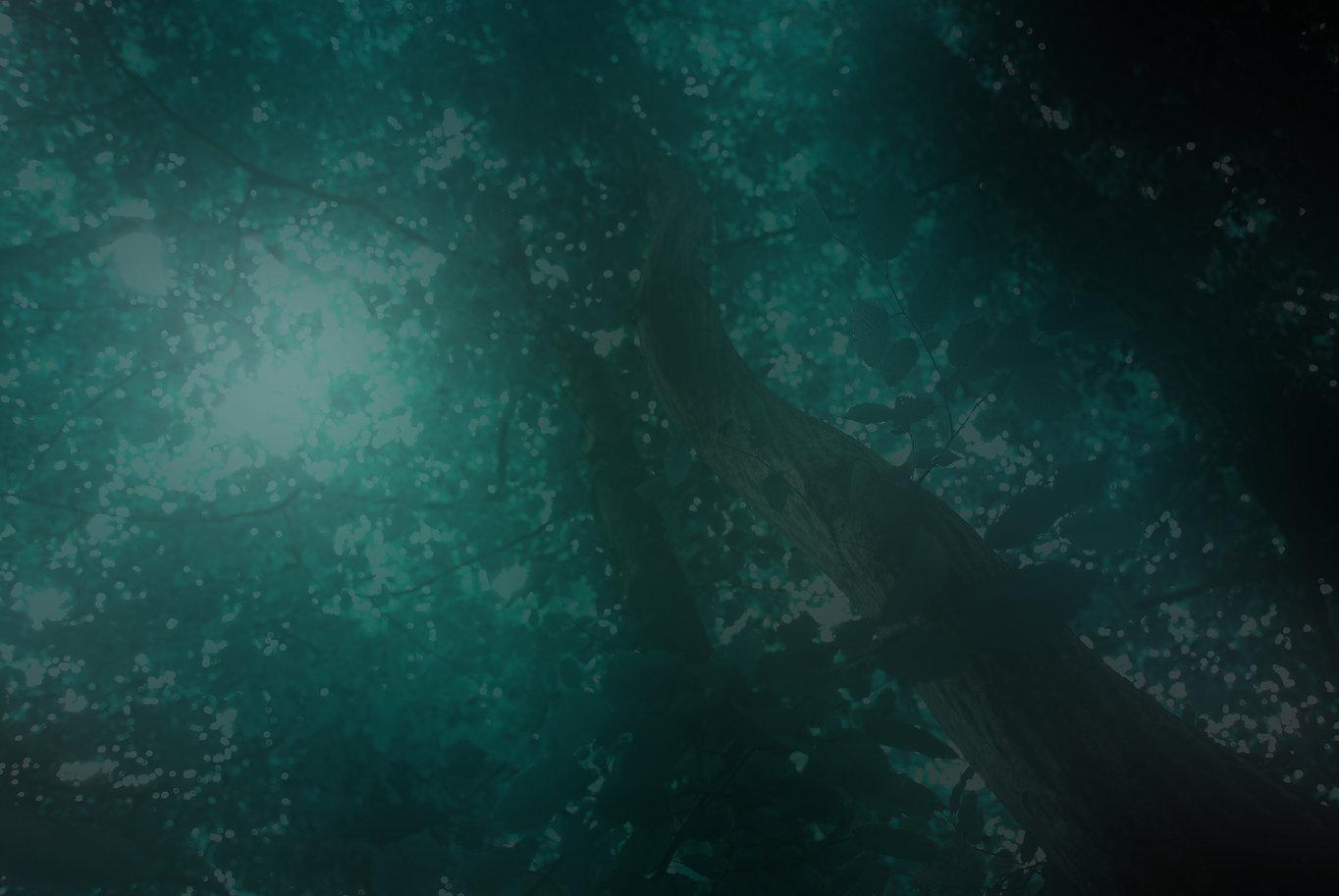 Grovewood 9–Blur 2.jpg