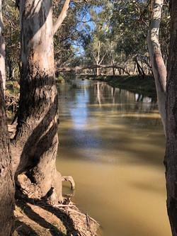 The River - Yarrabandai Creek Homestead