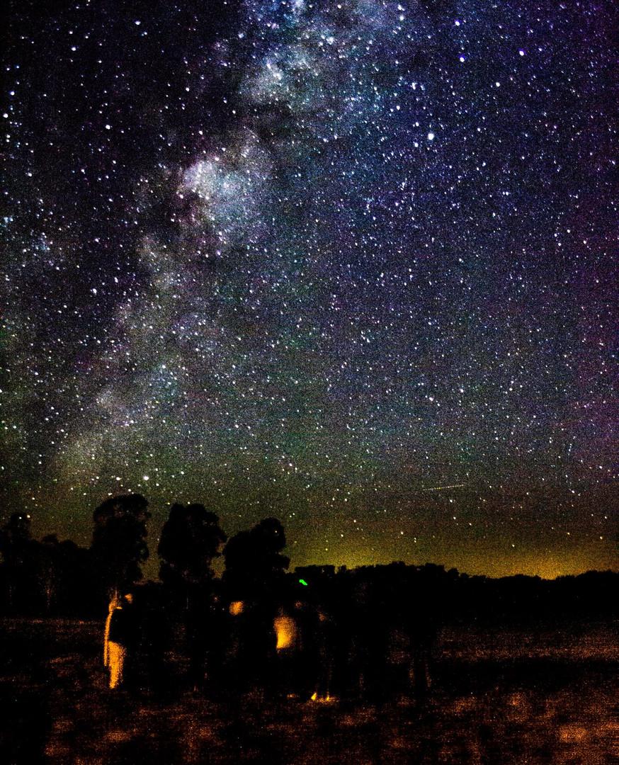 Stars Dinner.jpg