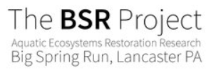 bsr project logo.PNG