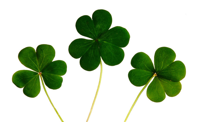 St. Patrick's Day Crafts/Recipes