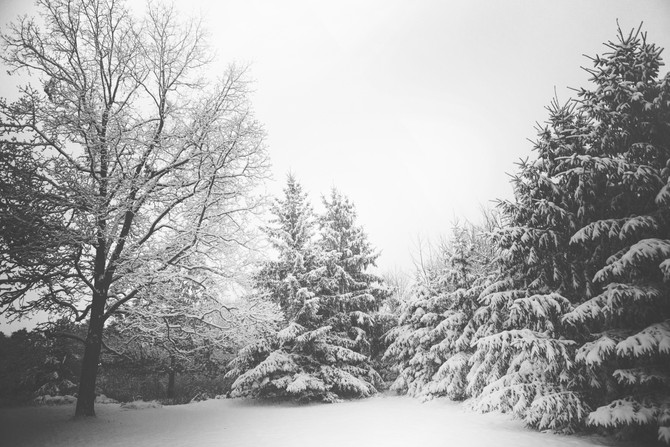 Hygge: How to Survive Michigan Winters