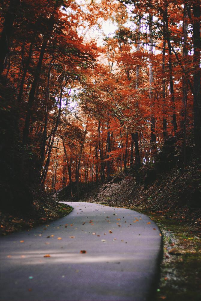 Pure Michigan Hotspots Perfect for this Fall Season
