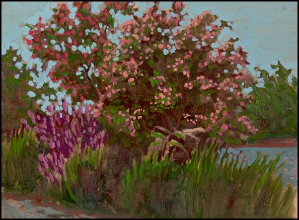 flower trees near the seaway