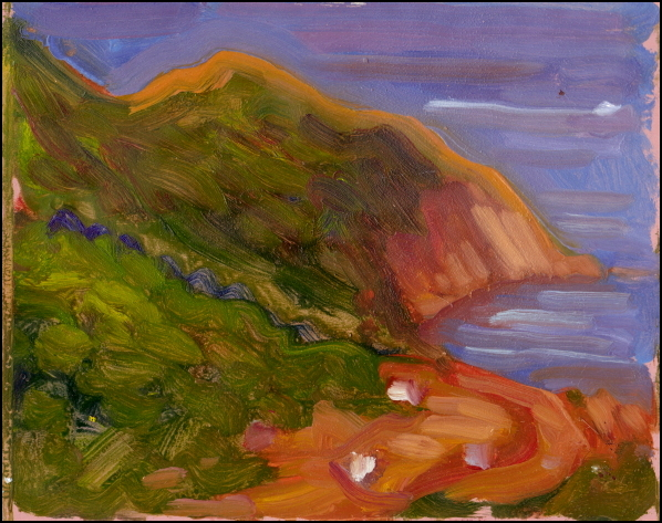 meat cove view