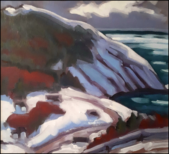 meat cove late december