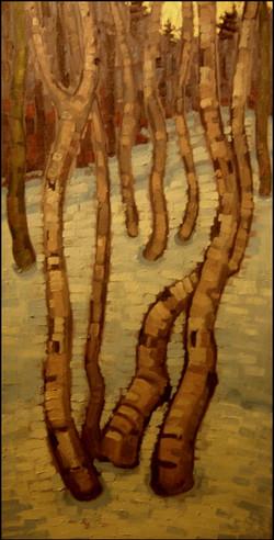 treesbehindthelodge
