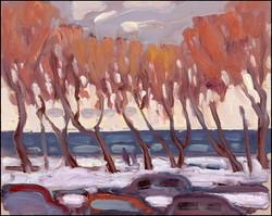 lakeshore trees