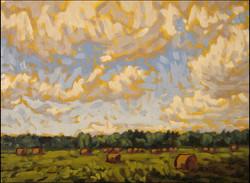 fields near spring bay