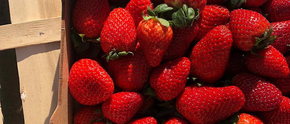 Organic Strawberries (250g)