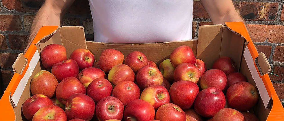 Organic Apple Braeburn (700g)