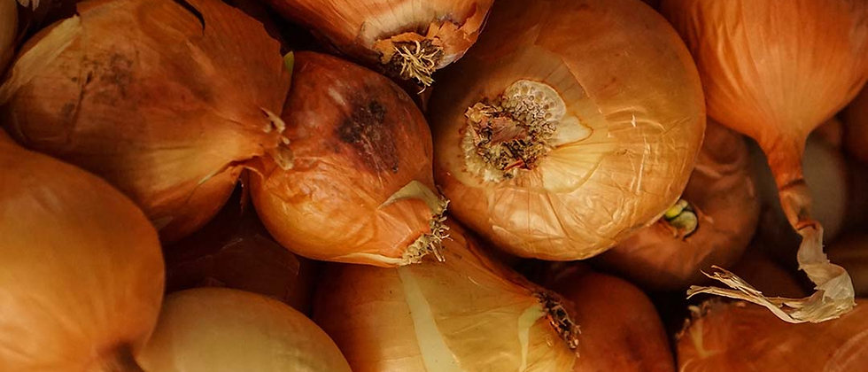 Organic White Onions (500g)