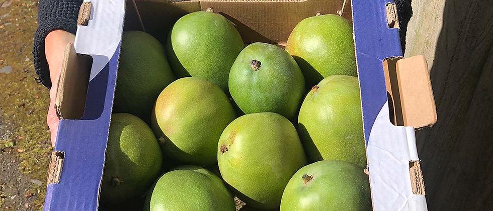 Organic Mango (Single)