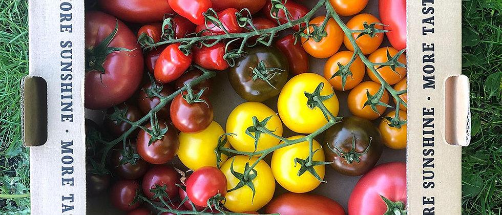 Organic Tomato Heirloom Mix (300g)