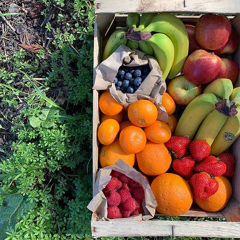 Fruit Box Image.jpg