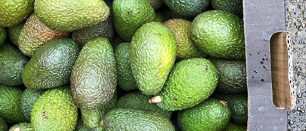 Organic Avocado Ripen at Home (1 Piece)