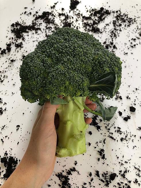 Broccoli Rezie.jpg