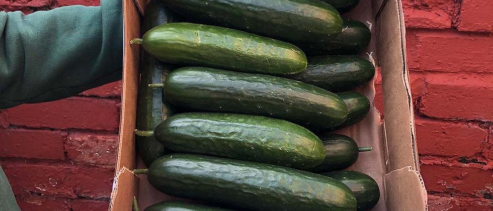 Organic Cucumber Mini (400g)
