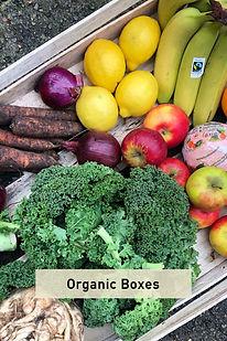 Organic Boxes.jpg
