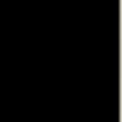 logo_trasp_nero.png