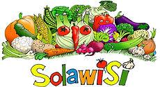 Logo Solawisi_breit.jpg