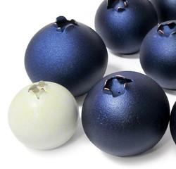 Blueberries for Black Bears