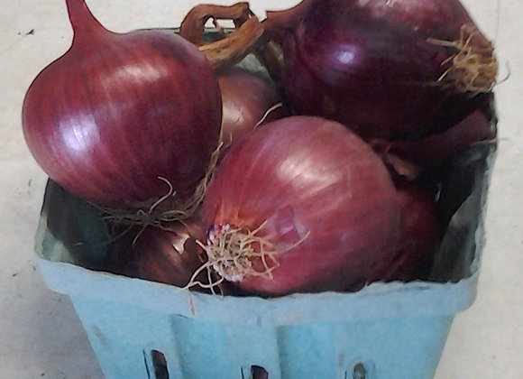 Red Onions - GHF