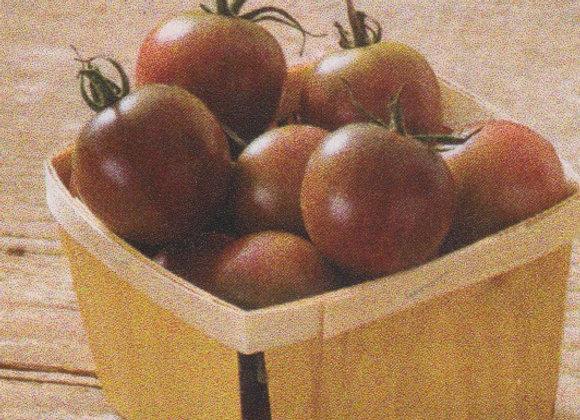 Black Cherry Tomatoe Plant - GHF