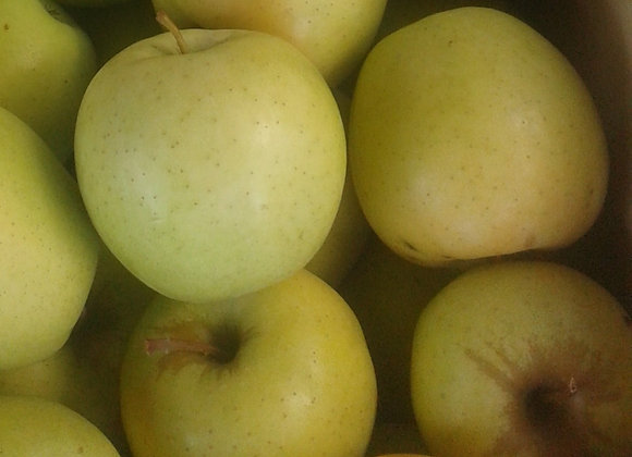 Golden Delicious Apples (Local - Not Organic) - GHF