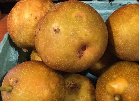 Organic Asian Pears - GHF