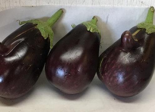Galine (Standard Eggplant) Plant - GHF