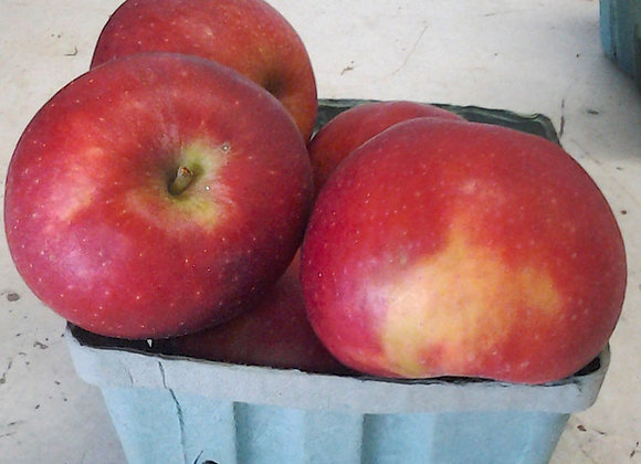 Staymen Apples (Local - Not Organic) - GHF