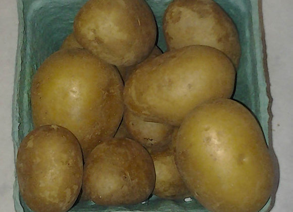 Mini Gold Potatoes - GHF
