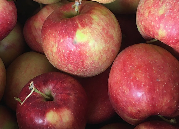 Jonagold Apples (Local - Not Organic) - GHF