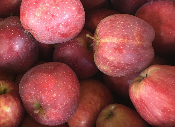 Red Delicious Apples (Local - Not Organic) - GHF
