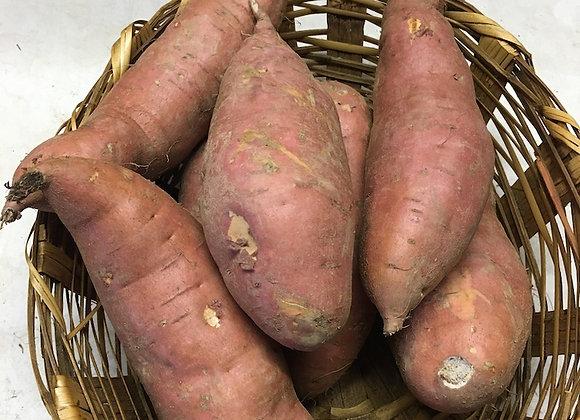 Sweet Potatoes - GHF