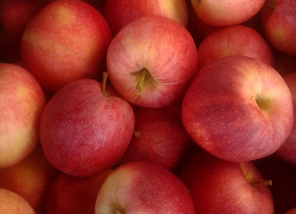 Gala Apples (Local - Not organic) - GHF