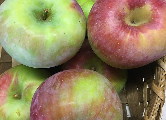 Cortland Apples (Local - Not Organic) - GHF